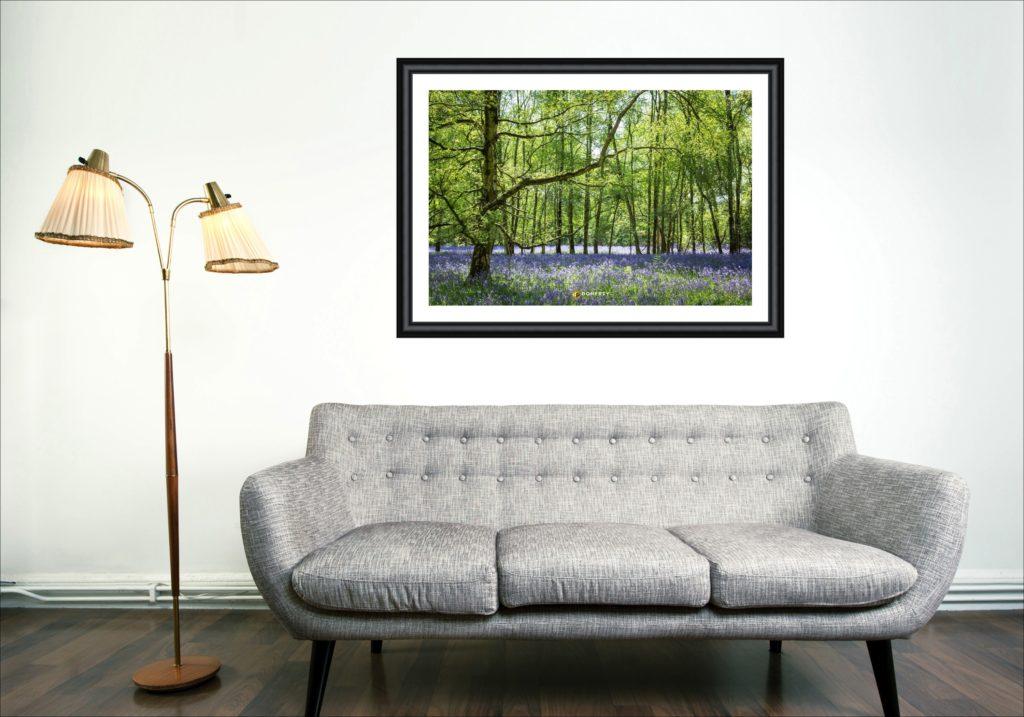 Bluebells framed photo in living room